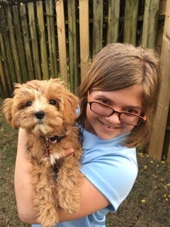 Sydney Bouterie, 12, received a female Cavapoo puppy named Toffee, thanks to a partnership between Petland owners Mike and Peggy Davis, the Animal Hospital of Tiger Point and the Make-A-Wish Foundation