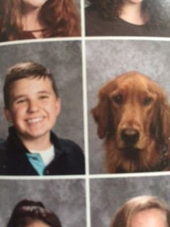 Oscer, a service dog, was featured in Vestal Middle Schools 2018 yearbook.