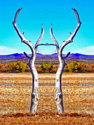 Celebrate Carrizozo's Tularosa Basin Gallery of Photography Fall and Winter Open House from 3 to 8 p.m. Saturday.
