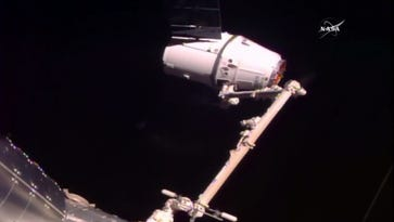 The SpaceX Dragon capsule flying the CRS-10 cargo resupply mission was captured by the International Space Station's robotic arm at 5:44 a.m. EST Thursday.