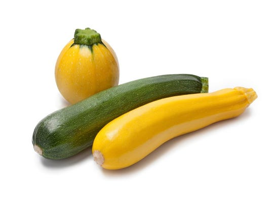 TDS-NBR-1013-Fresh-Pick-Summer-Squash.jpg