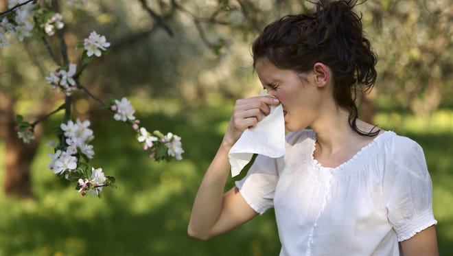 This winter's prolonged moisture may have laid the groundwork for a bad allergy season, said Dr. John Bosso, chief of allergy and immunology at Nyack Hospital.
