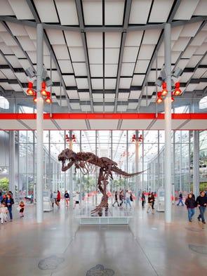 Explore the California Academy of Sciences, a combination