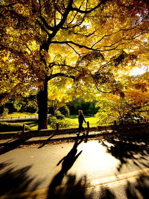 Eden Park, always a stunner. This one was taken of the spectacular fall foliage in 2004.