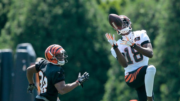 Wide receiver A.J. Green makes a catch during OTAs at the Bengals' practice field next to Paul Brown Stadium.