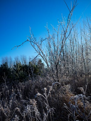 Patchy frost is possible overnight tonight in the Lansing area, forecasters say.