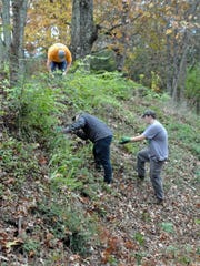 Volunteers have spent many hours clearing and beautifying Sharp's Ridge Veterans Memorial Park.