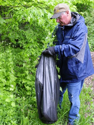 Jim Bearss, of Clyde Township, pulls garlic mustard at the Port Huron State Game Area.
