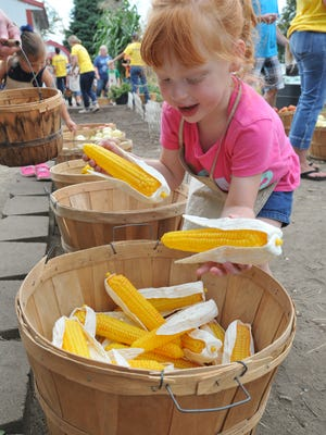 Little Hands on the Farm at the Iowa State Fair.