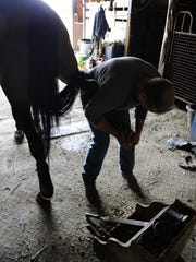 Mike Clark works on a horse's hoof at the Croswell