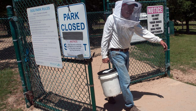 Greg Brewer, with Golden Harvest Bee Farm, works on Wednesday, May 17, 2017, to remove a bee swarm from a tree in the large dog park at Bayview Park in Pensacola.