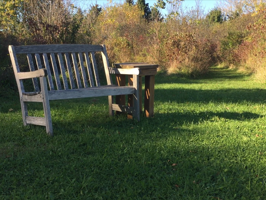 636440803925578241-Beckwith-Park-Bench.PNG