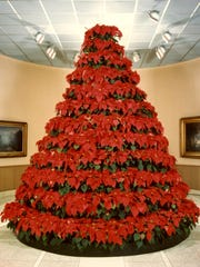 Norton Art Gallery's poinsettia tree in 1983.
