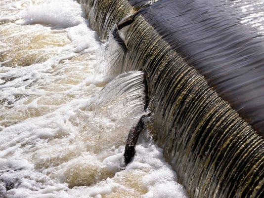 635757414797755286-rapids-AP-Exchange-Rapids-Restorato