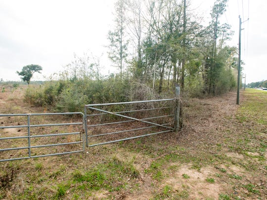 The land south of Sterling Way, between Bell Lane and Mulat Road, in Milton is being considered for the site of the new Santa Rosa County courthouse.  March 1, 2017.