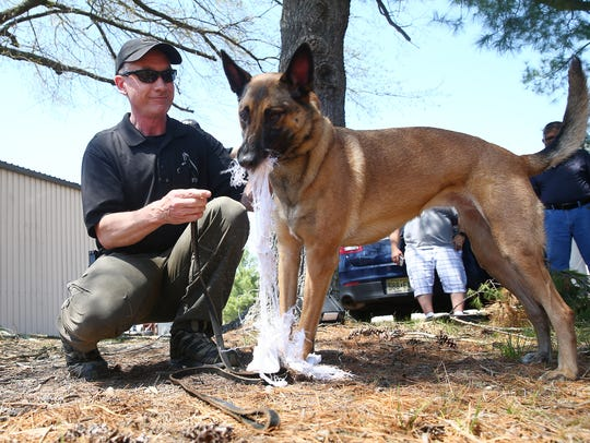 Agent Scott Nawrocki and K9 Roxy give a demo during
