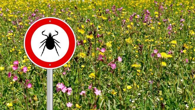 Tick warning sign in a flower meadow.