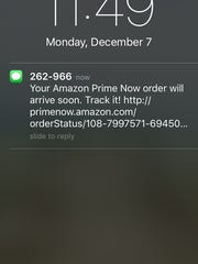 A text from Amazon notified me my order would arrive