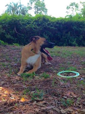 Carter takes a mandatory shade break during playtime in Lamancha Square park.