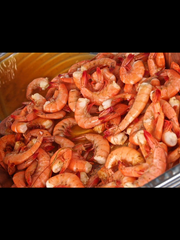 The Wild about Wildlife event will feature fresh Florida seafood like peel-and-eat shrimp.