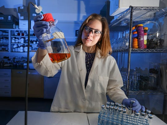 Oak Ridge National Laboratory's Karissa Cross prepares a sample to cultivate Desulfobulbus oralis, a novel oral microbe present in adults with advanced gum disease. Cross, a fourth-year Ph.D. candidate, led the lab's D. oralis study under Mircea Podar's guidance.