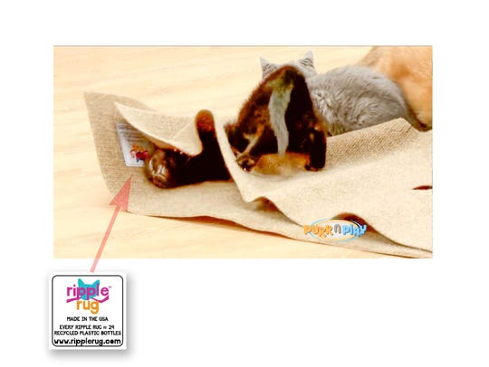 """Was this screenshot a Springfield company's """"fatal flaw""""? This image is said to come from an infomercial made to advertise a cat toy called the Purr N Play, which New York inventor Fred Ruckel alleges is a fraudulent knockoff of his own product, the Ripple Rug. Ruckel submitted the image as evidence in a 2018 lawsuit against Springfield-based Opfer Communications, alleging the presence of his logo in a Purr N Play video is evidence of unfair competition."""