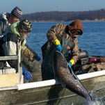 Proposal: Hike boat fees to fight Asian carp