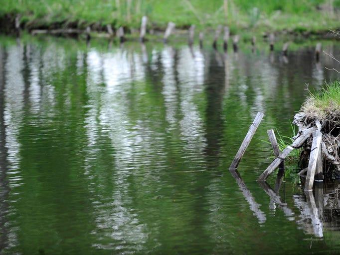 Talmadge Creek, photographed last Thursday, five years