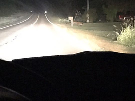 A Haslett resident captured this photo what the Michigan DNR later confirmed was a cougar in Clinton County's Bath Township on June 21. The cougar is behind a mailbox on the right side of the road.
