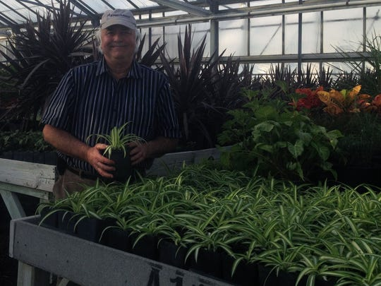 Kings Island greenhouse supervisor Ivan Booth shows