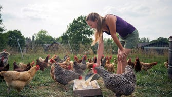 Farmer Claire Luff feeds the chickens at Aberlin Springs located in South Lebanon. Luff works with Leslie Ratliff, who is developing a new agricommunity that will be built around the organic farm in South Lebanon.