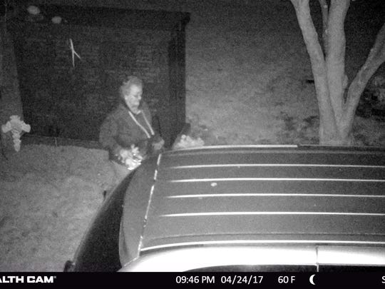 Pequannock police allege that this surveillance photo shows Riverdale flower shop owner Lynda S. Wingate stealing flowers and plants from a township church cemetery.