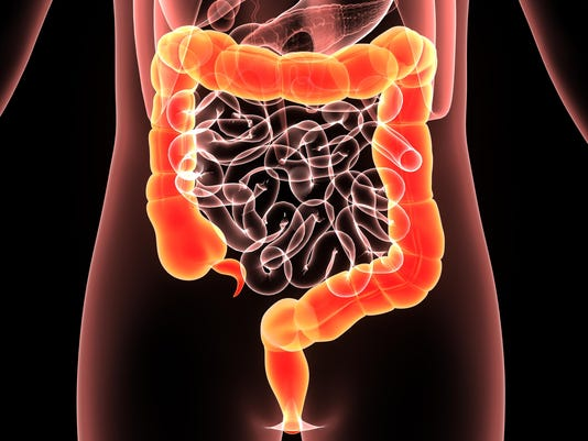 Illustration human body colon