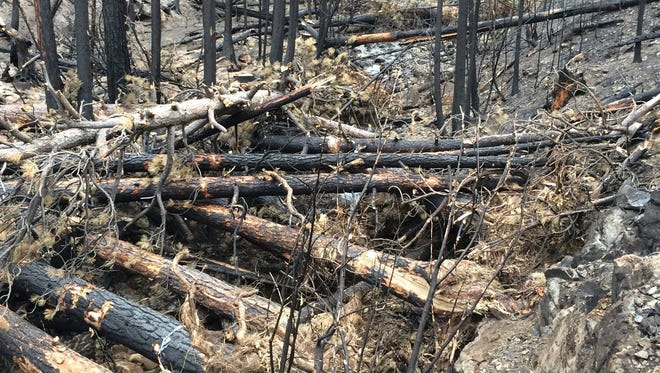 A log jam placed in Pine Creek to prevent runoff in the area of the Canyon Creek Fire Complex.