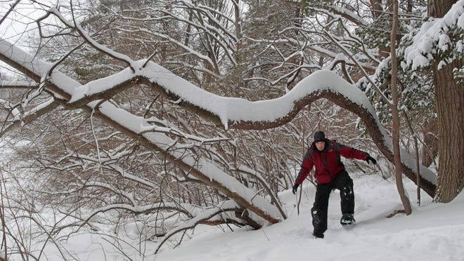 Winter hiking trails can be found all around Monroe County, including the trails at Durand-Eastman Park in Irondequoit Monday. Photographer Shawn Dowd snowshoes the Durand Lake Trail.