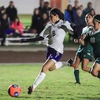 Girls soccer: Hawks advance to D-III title match