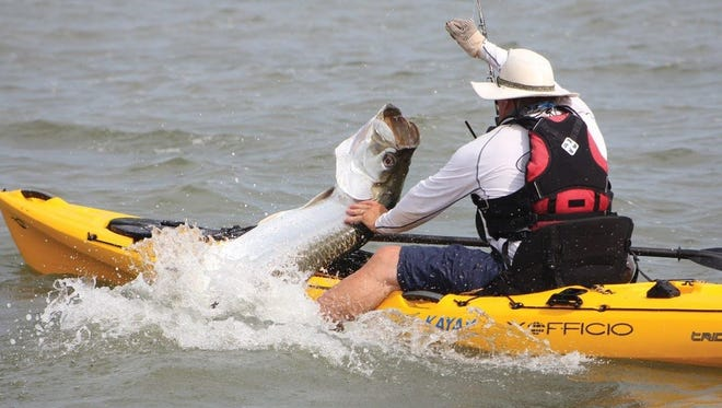 This ocean kayaker has his hands full trying to deal with a big tarpon that attempted to leap into his small boat. Kayak anglers along the Space Coast target tarpon during the summer months by launching their kayaks into the surf.