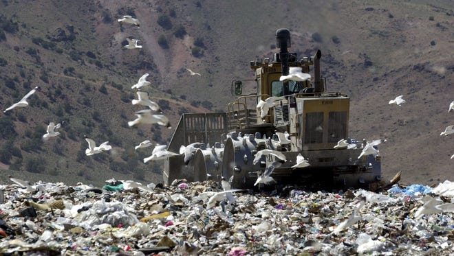 Gulls fill the air as heavy equipment works over a huge pile of garbage at the Lockwood Regional Landfill.