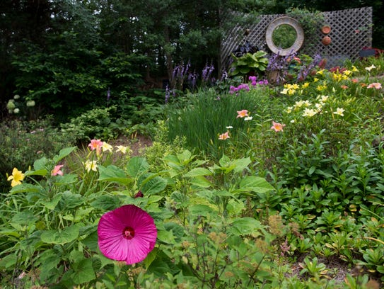 This section of the garden is filled with day lilies,