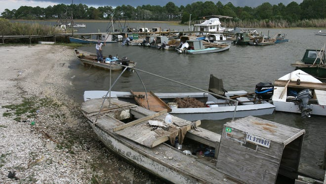 Oyster boats lined up along the shore of the Apalachicola River