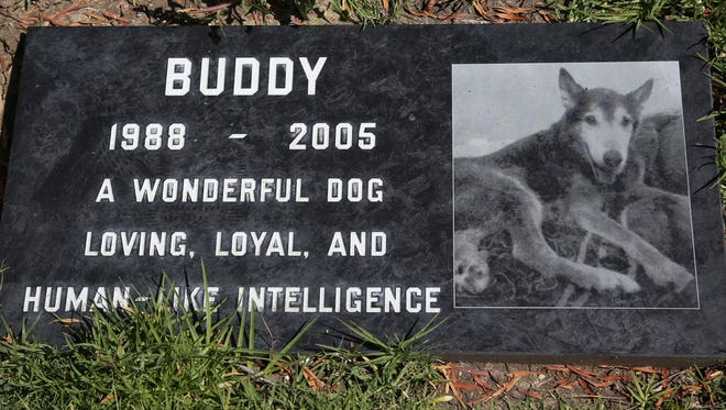 Buddy, a beloved family pet, is memorialized at the Los Angeles Pet Cemetery in Calabasas, Calif. Saying goodbye to a beloved dog or cat is hard. Despite many options, an estimated 70 percent of owners will leave the body with their veterinarian to dispose of.