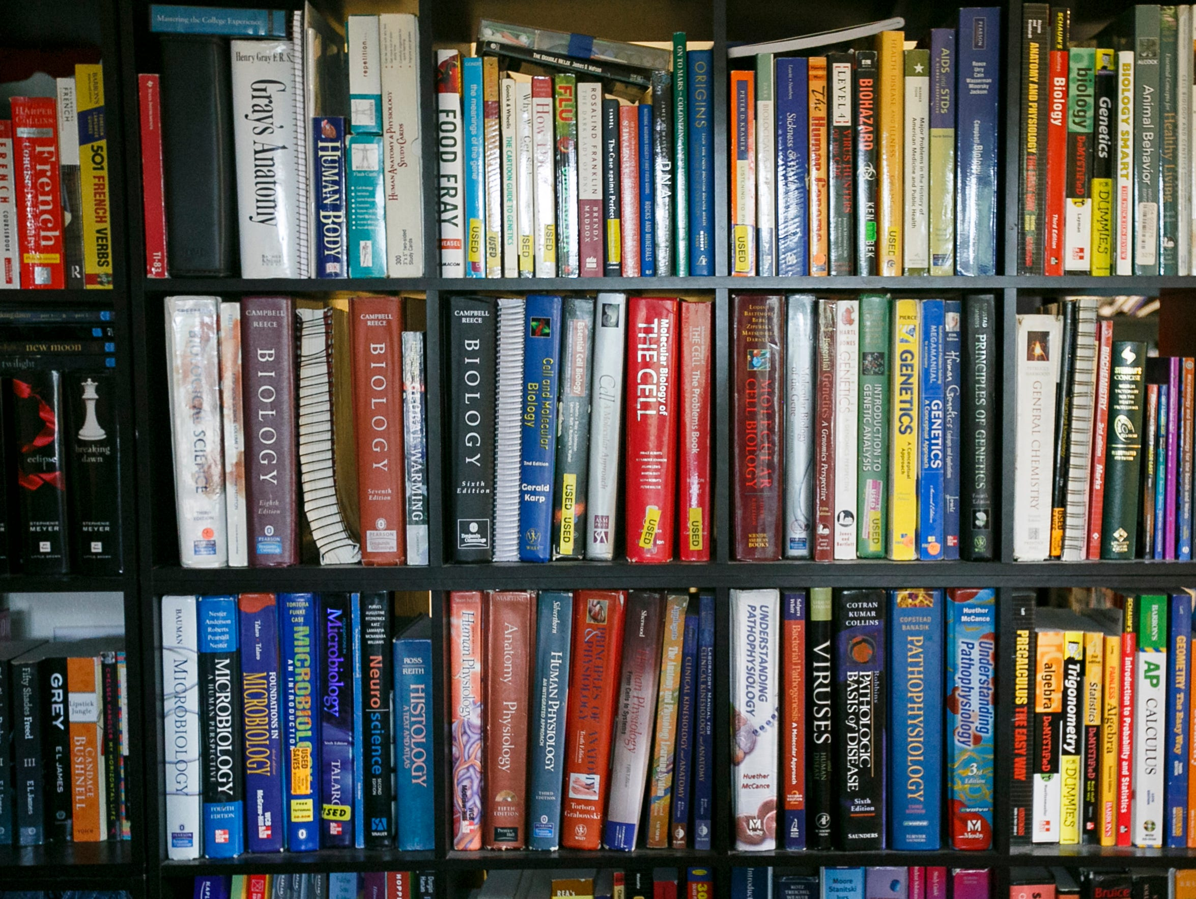 Mia Storm's living room is packed full of text books
