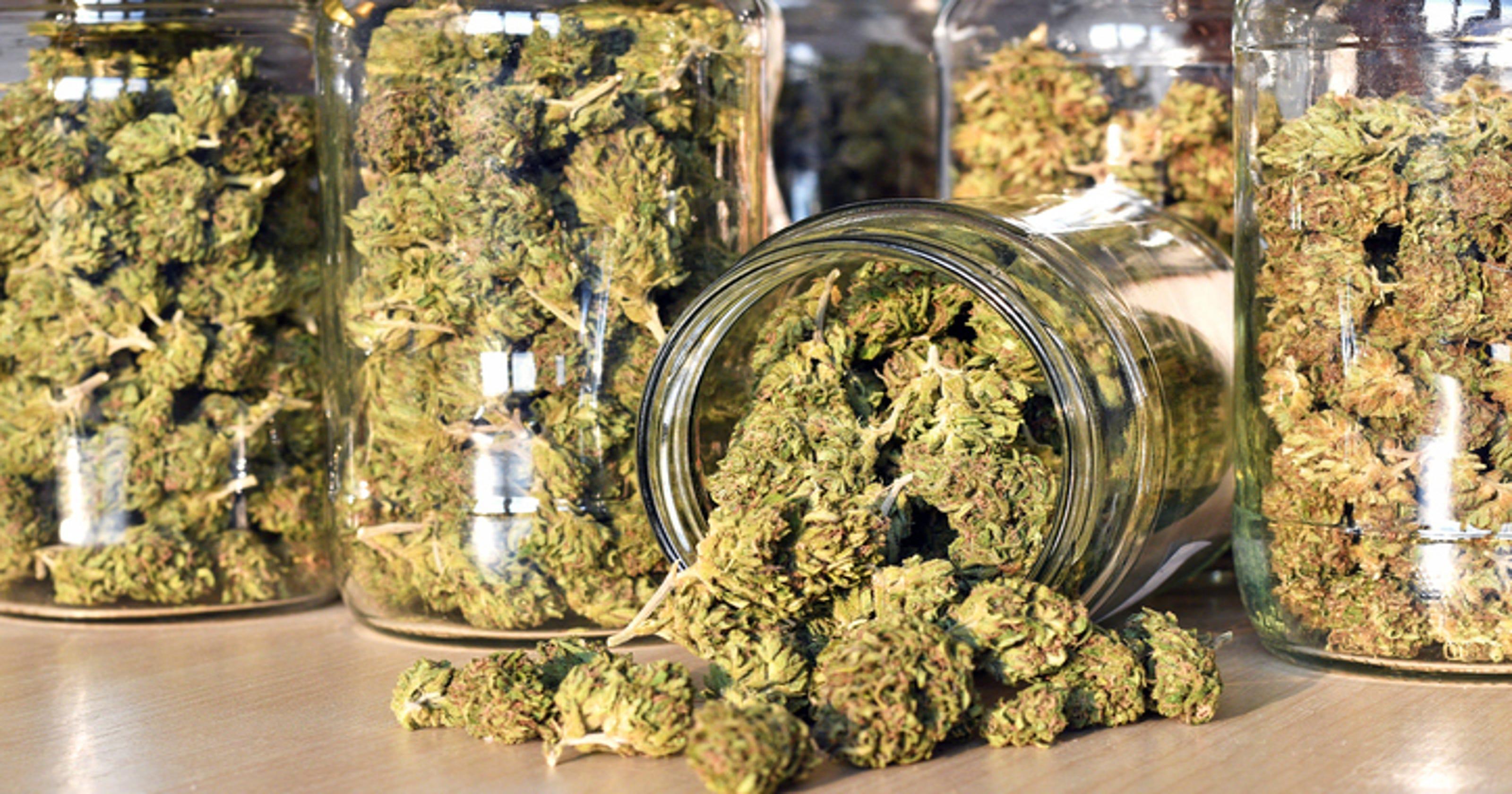 New Michigan marijuana dispensary deadline falls on Halloween