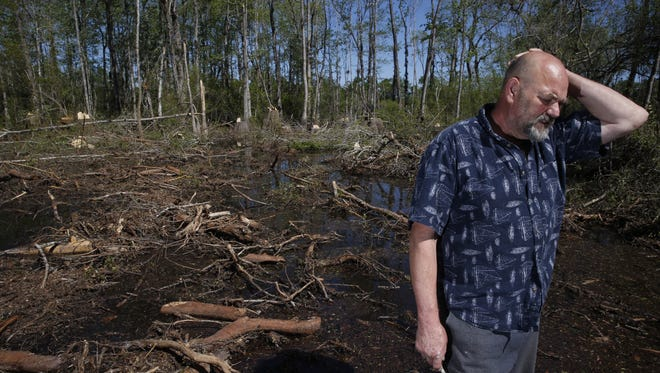 Jim McMurry lives adjacent to land in Wilkinson Woods that's been clear-cut in a logging operation.