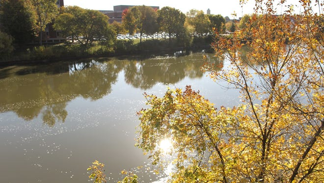 Leaves begin to change colors along the Iowa River on Wednesday, Oct. 14, 2015.