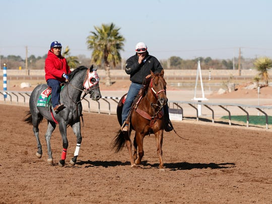 "A rider aboard ""My Bucket is Full,"" along with a guide horse train on Wednesday morning in preparation for the opening day of racing at Sunland Park Racetrack & Casino on Friday afternoon. for its 59th season of live racing."