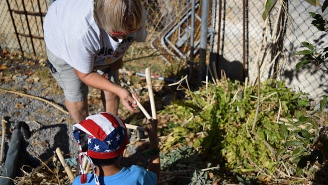 Cutting lovage down in fall can be a fun school garden chore for adults and children alike.