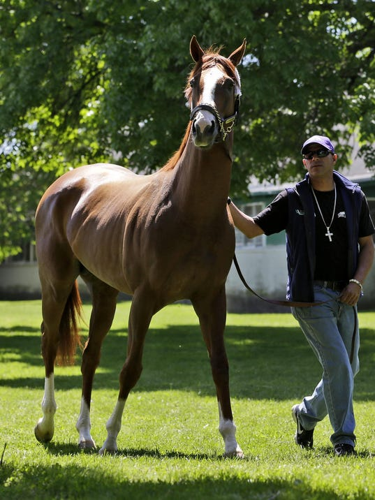 -APTOPIX Belmont California Chrome Horse Racing.JPEG-0c76f.jpg_20140520.jpg