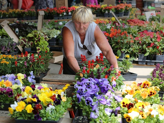 Cindy Chapman of Cindy's Greenhouse in East Troy sets