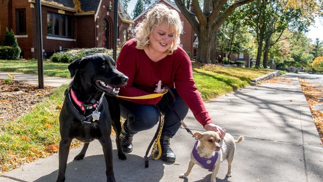 Tamara Masters pets her dogs Vida, right, an 11-year-old Chihuahua mix, and Theodora, a 2-year-old Labrador mix, while out on a walk recently in her Peoria neighborhood. Masters was diagnosed with COVID-19 in August and has since recovered, but still suffers from some lingering effects including a blood clot in her lungs.